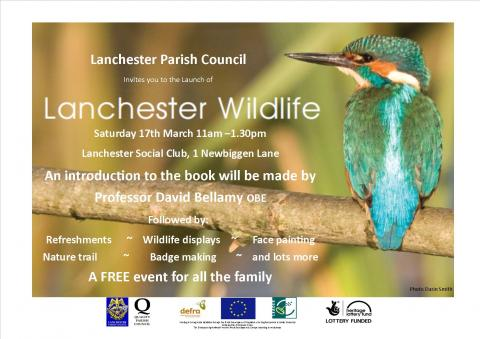 wildlife-invite-flyer